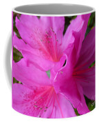 Macro Purple Azalea Flower Coffee Mug