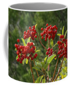 Madrone Berries Coffee Mug