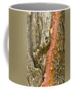 Madrone Tree Bark Coffee Mug