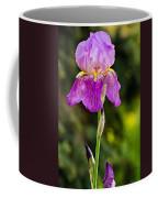 Magenta Iris Coffee Mug