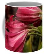 Magenta Rain Coffee Mug