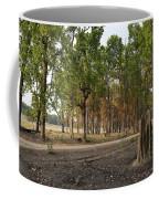 Magical Kanha Coffee Mug