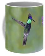 Magnificant Hummingbird Coffee Mug