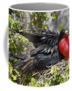 Magnificent Frigatebird Galapagos Coffee Mug