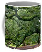 Magnificent Oak Alley Tree Coffee Mug