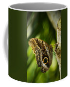 Magnificent Owl Butterfly Coffee Mug