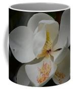 Magnolia 14-3 Coffee Mug