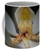 Magnolia 14-4 Coffee Mug
