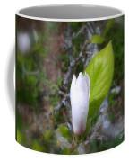 Magnolia Bloom Coffee Mug