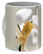 Magnolia Center Coffee Mug by Carol Groenen