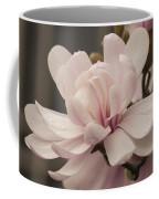 Magnolia Dream Coffee Mug