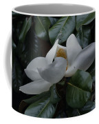 Magnolia In Full Bloom Coffee Mug