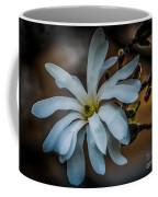 Magnolia Tree Blossum Coffee Mug