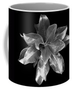 Magnolia Tree Leaves Coffee Mug