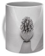 Magnolia Veil Coffee Mug