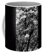 Magnolias In White Coffee Mug