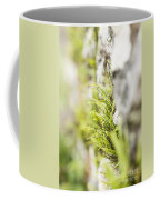 Maiden-hair Spleenwort Coffee Mug