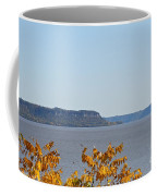 Maiden Rock Coffee Mug