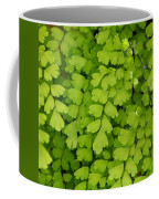 Maidenhair Fern Coffee Mug