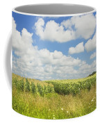 Maine Corn Field In Summer Photo Print Coffee Mug