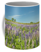 Maine Wild Lupine Flowers Coffee Mug