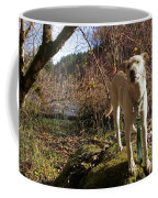 Maisie On A Rock Coffee Mug