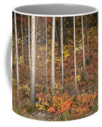 Majestic Autumn In The Grand Tetons Coffee Mug by Sandra Bronstein