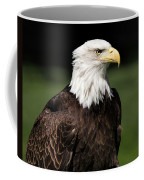 Majestic Beauty Coffee Mug