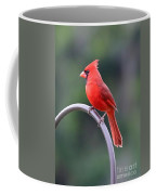 Majestic Cardinal Coffee Mug
