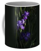 Majestic Spotlight Coffee Mug