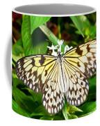 Malabar Tree Nymph Butterfly Coffee Mug