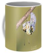 Malachite Butterfly Emerging 4 Of 6 Coffee Mug