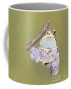 Malachite Butterfly Emerging 6 Of 6 Coffee Mug