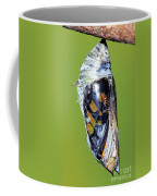 Malachite Butterfly Metamorphosis Coffee Mug