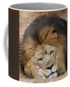 Male African Lion Coffee Mug