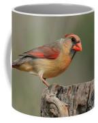Male And Female Cardinal Coffee Mug