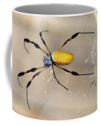 Male And Female Golden Silk Spiders Coffee Mug