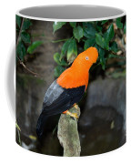 Male Andean Cock-of-the-rock Coffee Mug