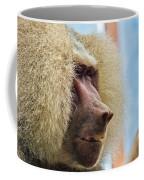 Male Baboon Coffee Mug