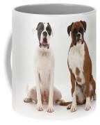 Male Boxer With Female Boxer Dog Coffee Mug