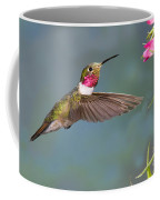 Male Broad-tailed Hummingbird Coffee Mug
