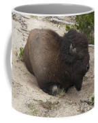 Male Buffalo At Hot Springs Coffee Mug