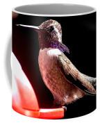 Male Costa Hummingbird On Perch Coffee Mug