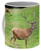 Male Deer On Field Coffee Mug