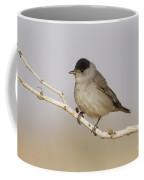Male Eurasian Blackcap Coffee Mug