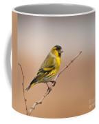 Male Eurasian Siskin Coffee Mug