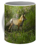 Male Fox   #3521 Coffee Mug