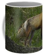 Male Fox And Pup   #3554 Coffee Mug