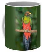 Male Golden-headed Quetzal Coffee Mug