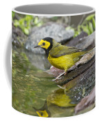 Male Hooded Warbler Coffee Mug